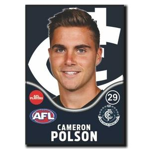 2019 - Cameron Polson Players Badge.